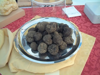 Truffles black Croatia